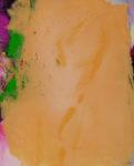Norbert Pagé 26 02 11 81 x 65 cm 2011